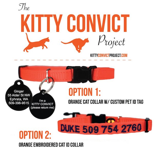 Kitty Convict Project Collars