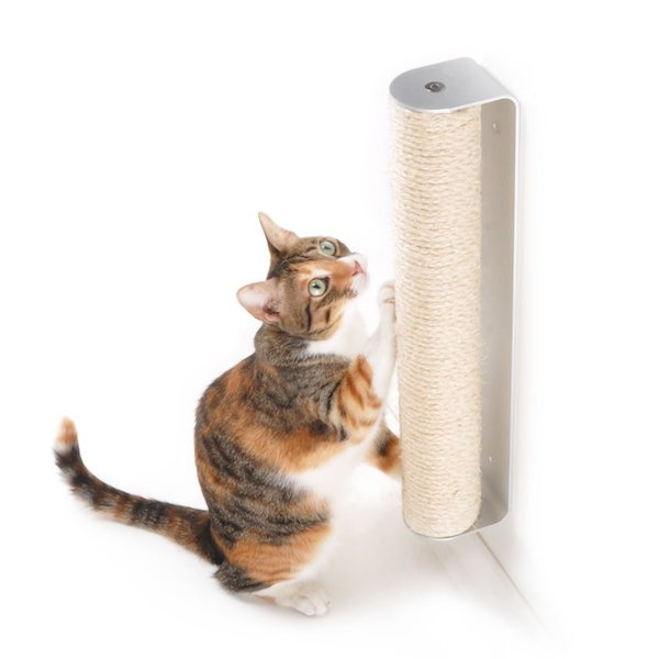 4 Claws Wall Mounted Scratching Post