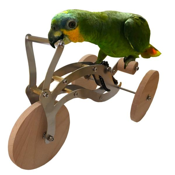 Intelligence Training Bird Bike Toy