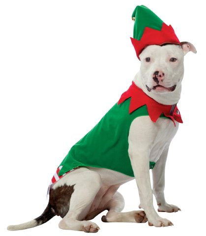 Elf Dog Costume  sc 1 st  Petslady.com & 20 Cool Halloween Costumes For Large Dogs | Petslady.com