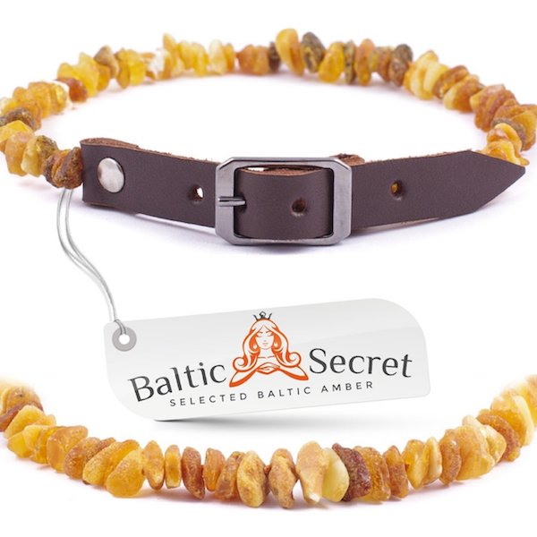 Baltic Secret Raw Baltic Amber Gems