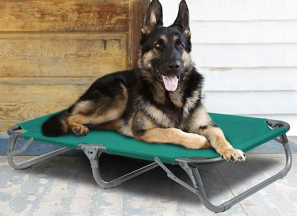 GigaTent Elevated Portable Pet Cot