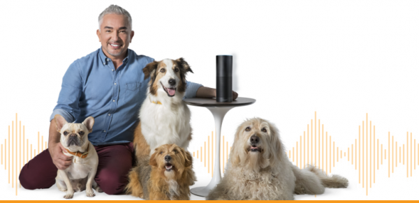 Cesar Milan and dogs listening to the Amazon Echo