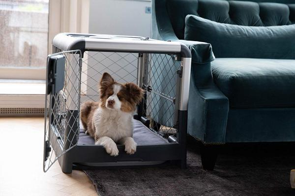 Diggs Revel Collapsible Dog Crate