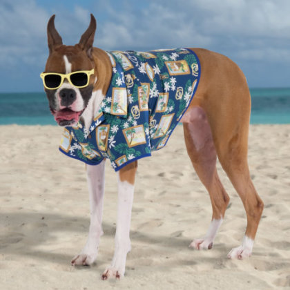 Hawaiian Shirt for dogs: Hammacher Schlemmer