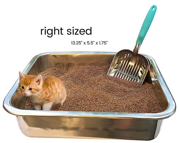 DuraScoop Kitty Litter Scooper