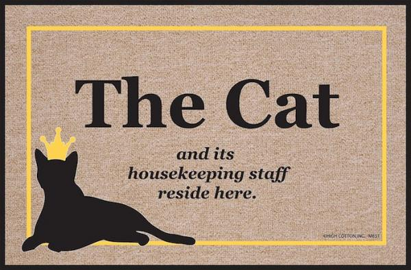 The cat and its housekeeping staff live here