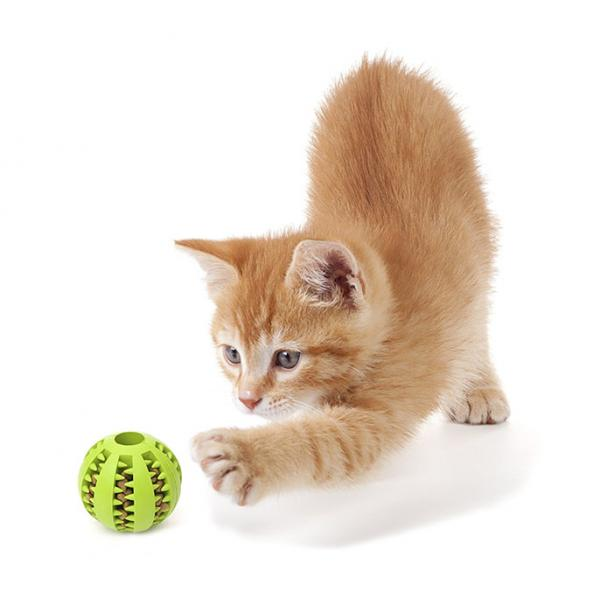 Some cats like Playay Balls