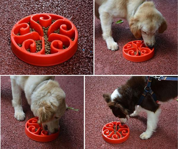 Siensync Ergonomic Slow Feeder For Dogs