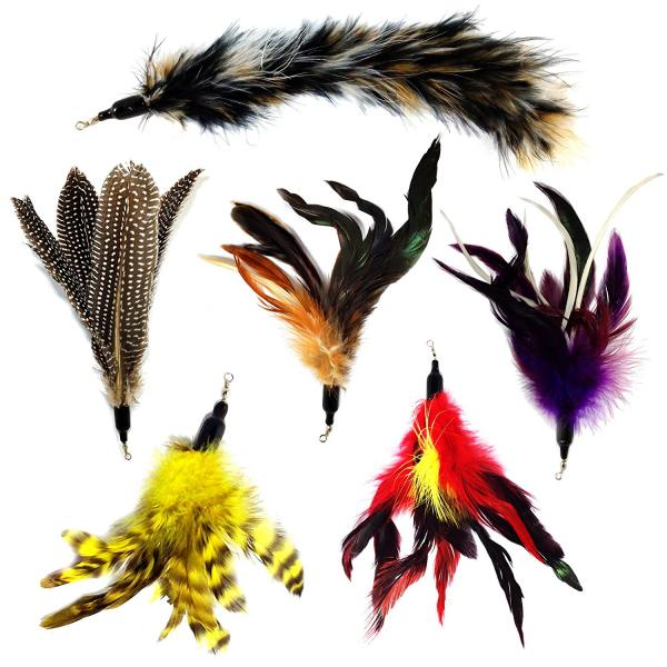 Pet Fit For Life Multi Piece Replacement Feathers Pack