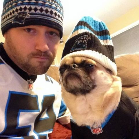 Cool McPug for the Panthers