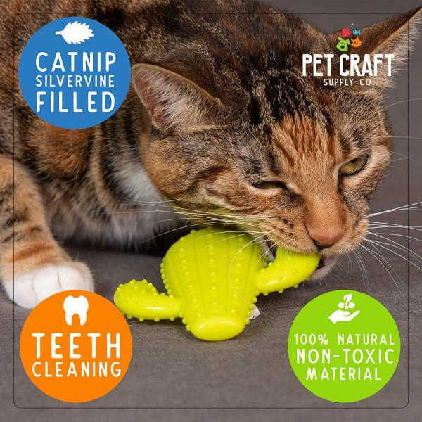 Pet Craft Supply Cactus Cat Toy for Dental Health