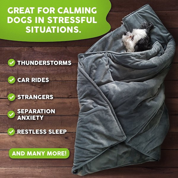 Canine Coddler Weighted Blanket Calms Dogs With Anxiety