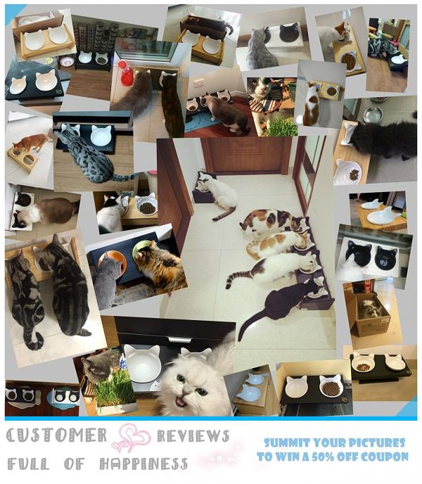 ViviPet creates collage of customer's photos