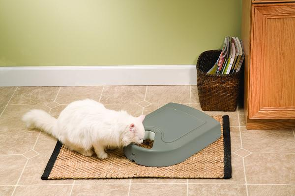 PetSafe Automatic Pet Feeder - 5 meals