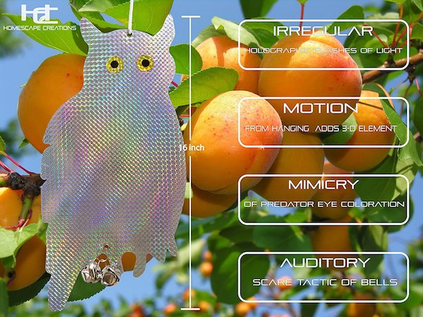 "Homescape Creations Holographic Owls ""Scarecrows"""