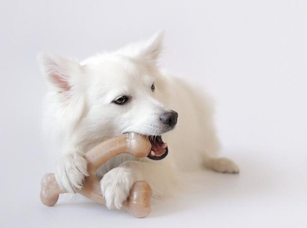 Benebone Wishbone For Dogs