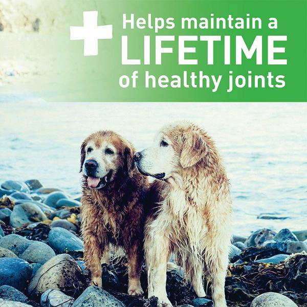 Greenies Aging Care Dental Dog Treats