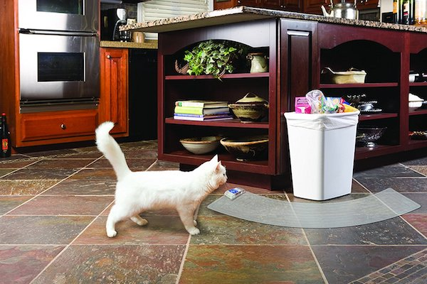 5 Best Products To Keep Your Pets Off Furniture Counters