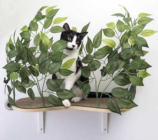 On2Pets Canopy Shelves