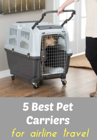 5 best pet carriers and tips for safer airline cargo