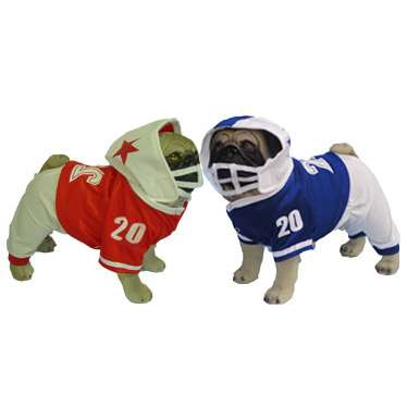 Pugs in football jerseys: image via thisnext.com