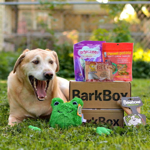 BarkBox Goody Packages are Different Each Month: BarkBox Image via BarkBox Facebook