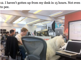Beast, the workaholic