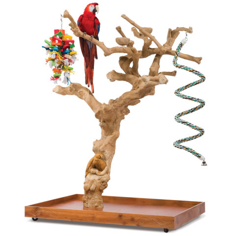 Hand-Carved Coffee Tree Bird Perch