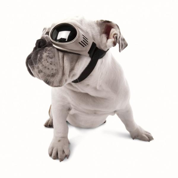 Doggles Original Dog Goggles
