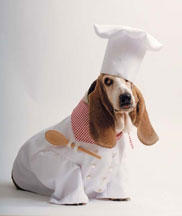 Dog-Costume-Chef-Lander: Image by Womans Day Staff, WomansDay.com