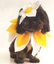 Dog-Costume-Flower-Lander: Image by Womans Day Staff, WomansDay.com