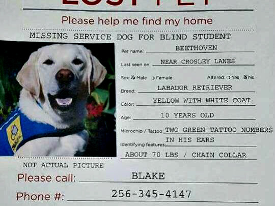 Poster for Missing Guide Dog: Facebook users helped Beethoven find his way home