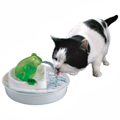 Cat Water Fountain with Frog by Felinicity: Entice your cat to drink more water