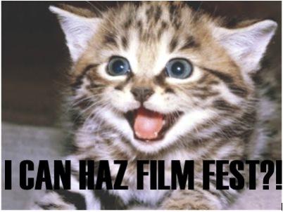 Internet Cat Video Film Festival: Source: picturesofcats4you.com