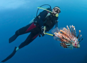 Fishing for Lionfish