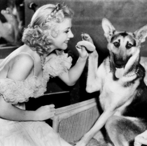 Ginger Rogers: Source: celebritiesandtheirdogs.tumblr.com