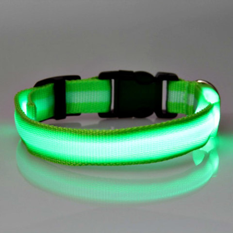 Dog Safety Collars: Solid LED light dog collar
