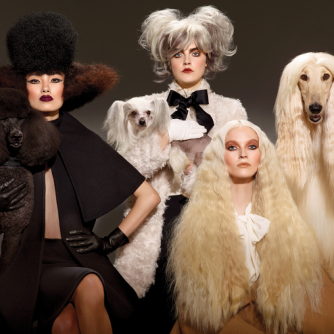 MAC's new makeup line 'Haute Dogs Color Collection': image via maccosmetics.cim