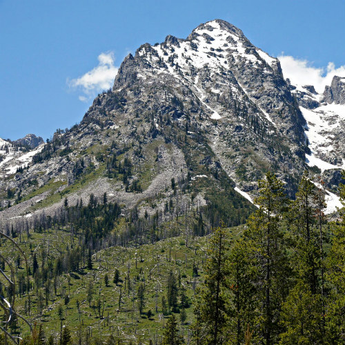 Grand Teton Snowy Peak