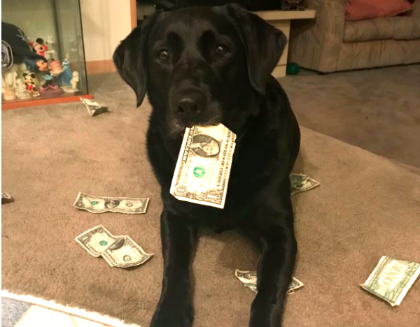 Holly and her treat money
