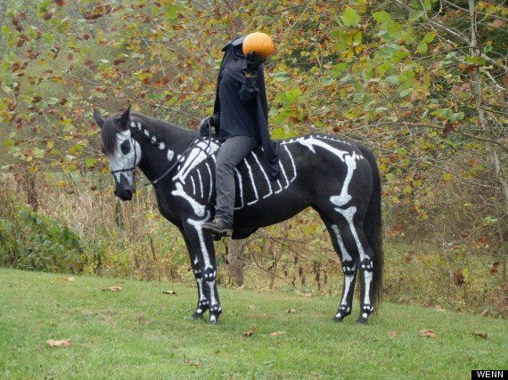 Skeleton Horse Costume (Image via I Love Halloween)