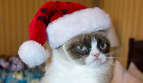 Grumpy Cat: Souce: Inquistir.com