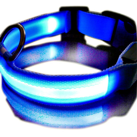 LED Dog Collars Can Help You Find Your Pets: Glow in the dark dog collars make finding Fido easier