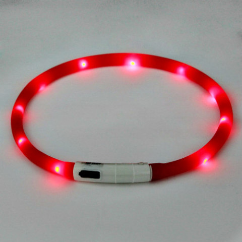 LED Glowing Dog Collars Make It Easier To Spot Fido In The Dark: Rope light dog collar
