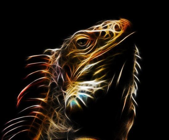 Lizard Fractalius by Ossowski: Some intense lizard art by Ossowski!