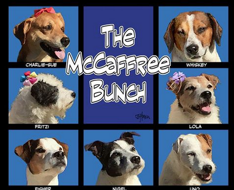 The McCaffree Bunch