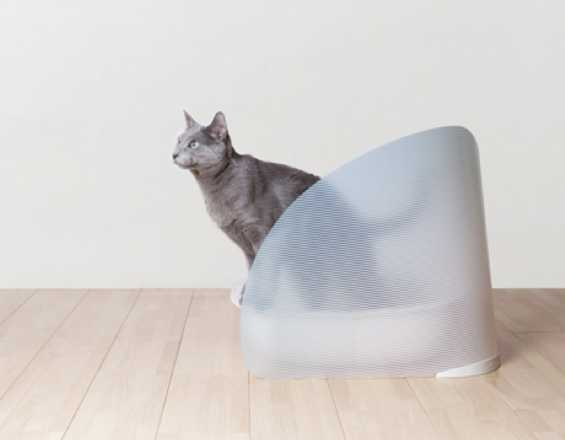 Oppo Toilet Screen For Cats Shields Against Kicked Kitty