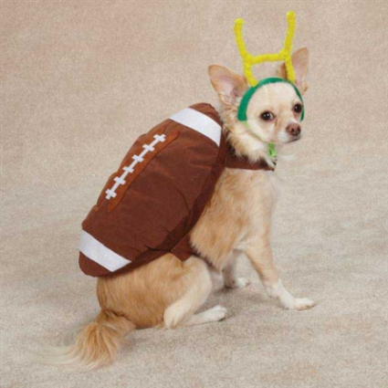 Football costume or touchdown costume?: image via thepet-boutique.com
