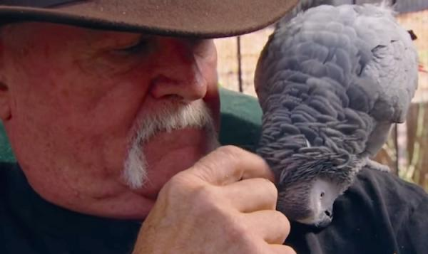 Veteran and Parrots Find Love at Serenity Park Sanctuary